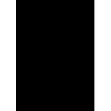 Waakye